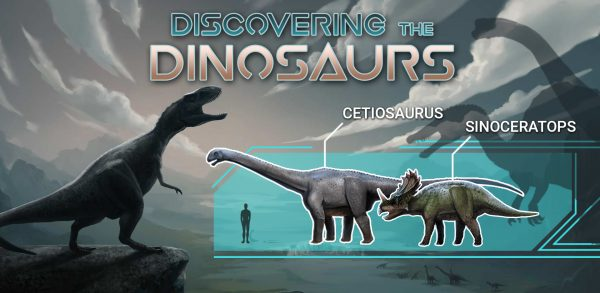 Discovering the dinosaurs